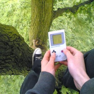 The Game Boy Tree Adventures